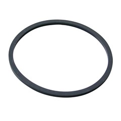 Fuel Sender Gasket, 99-02 F-Body